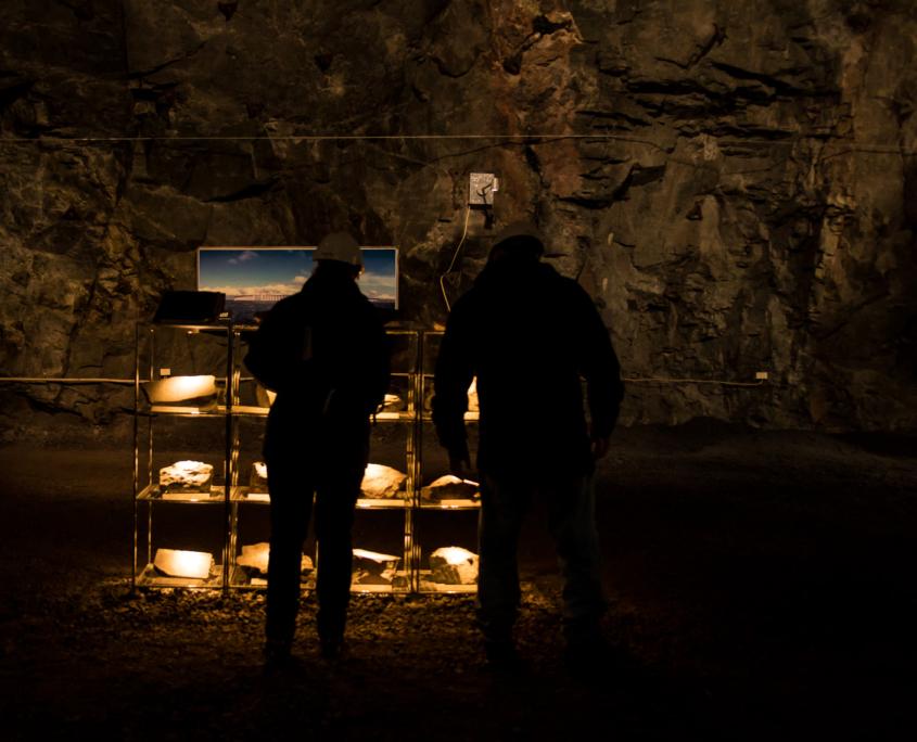 Bergarter utstilling