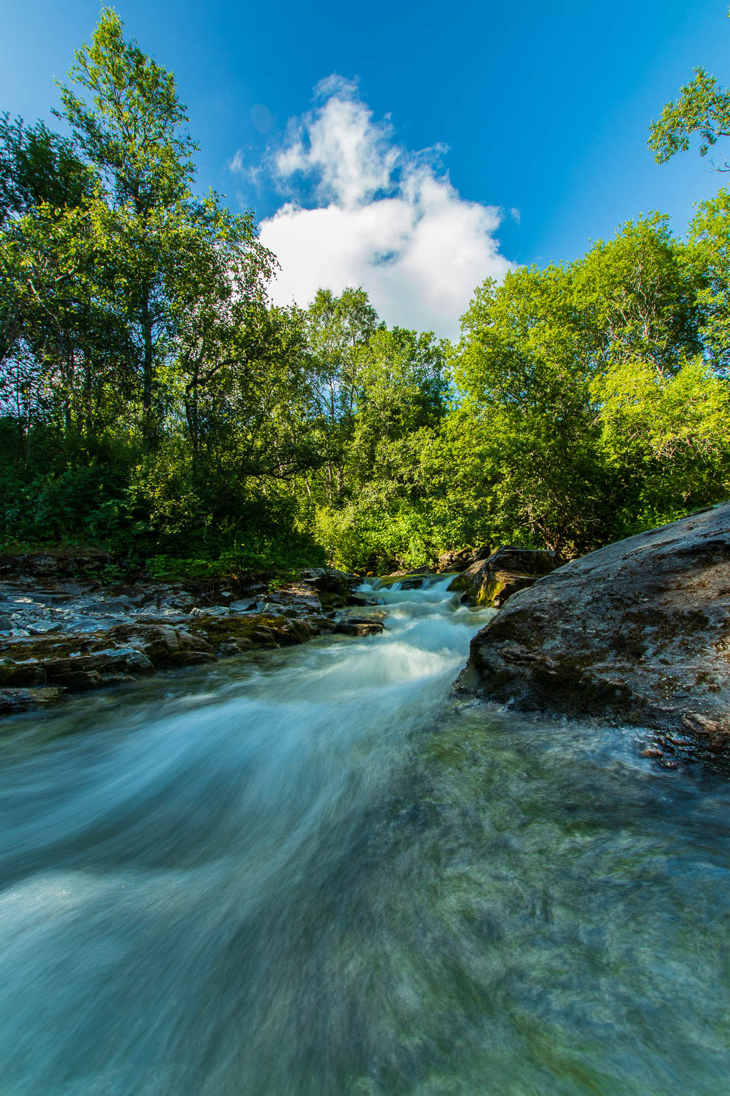 Long exposure - The River - Copyright Trygve Selmer